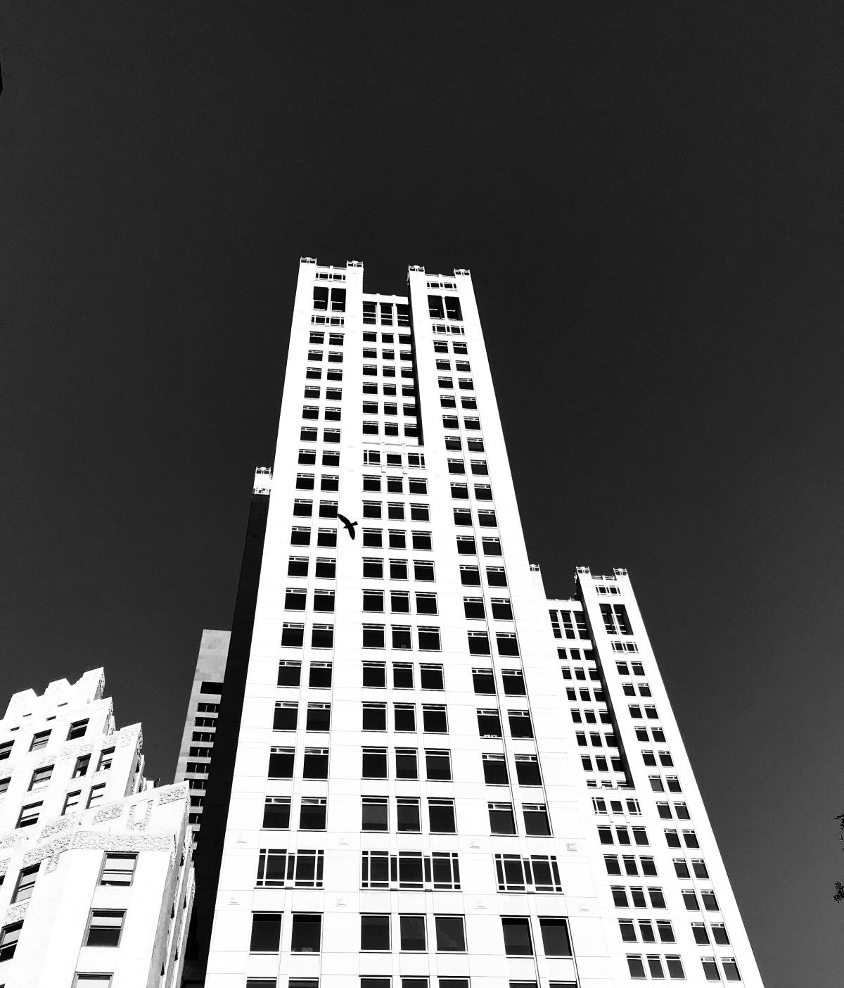 black & whiteboston