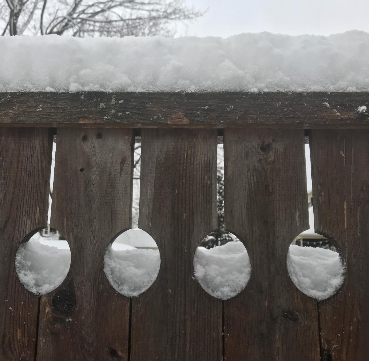 snow spoons